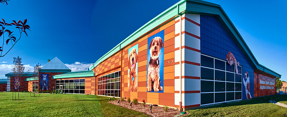 decorative building signage at the Best Buddy Pet Center