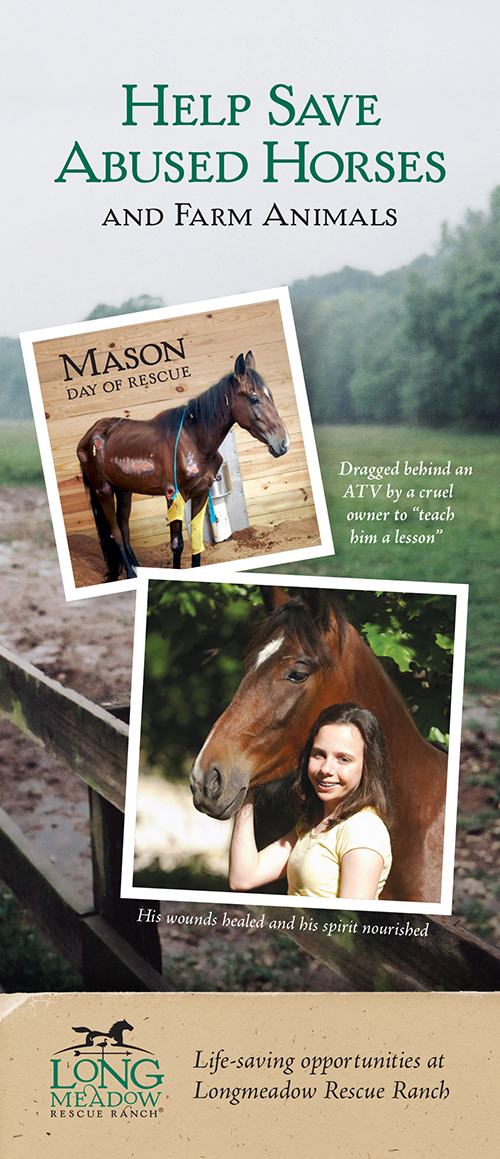 Donor brochure called Help Save Abused Horses and Farm Animals