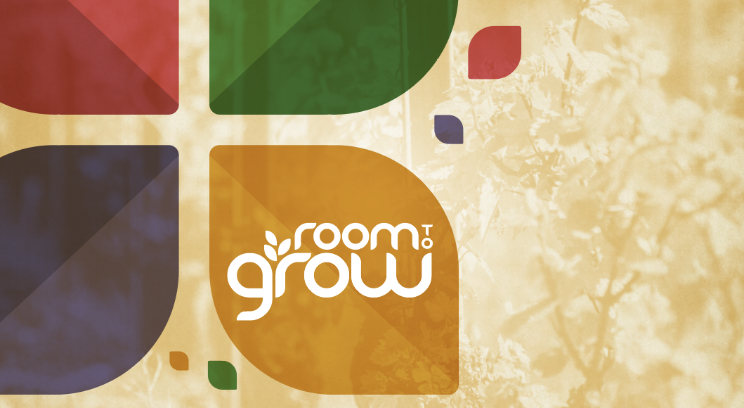 Room to Grow campaign brochure cover