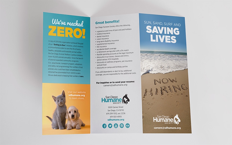 San Diego humane society vet recruitment campaign brochure