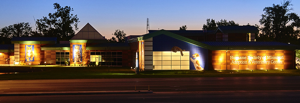 night time photo of Best Buddy Pet Center building signage